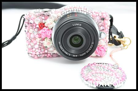 VioletLeBeaux-Decoden-Camera-Panasonic-Lumix-GF3-8319_10971