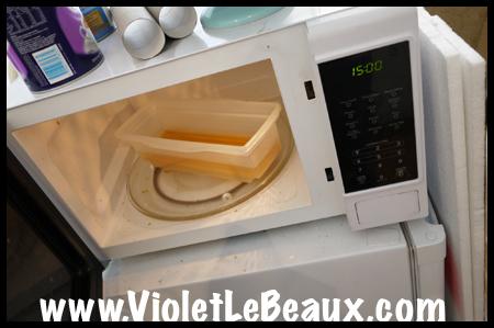 VioletLeBeauxP1000895_1130 copy