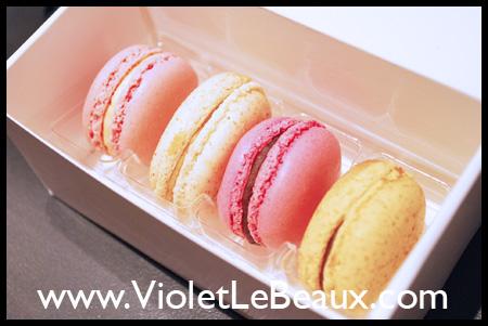 VioletLeBeauxDSC_0055_6399