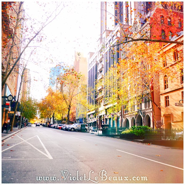 12 Melbourne Autumn Leaves Architecture Time!   Melbourne Snapshots