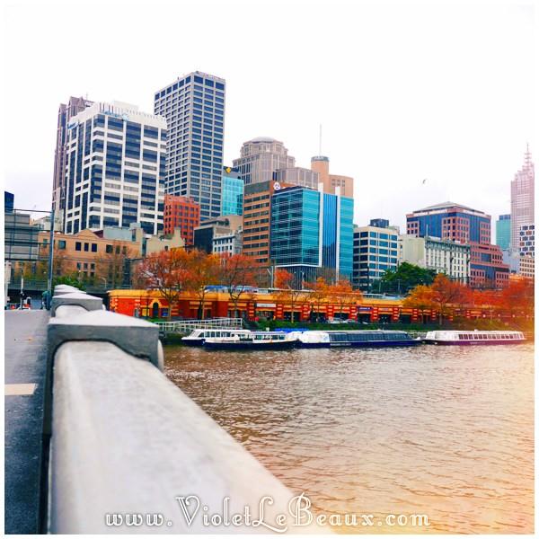 16 Melbourne Autumn Leaves Architecture Time!   Melbourne Snapshots