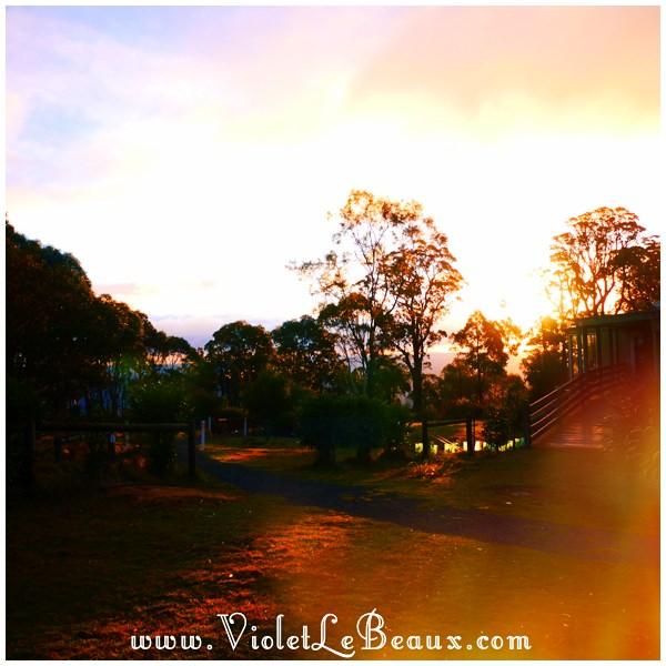 15 Bendigo Sunrise The No So Pink Cliffs and Mount Macedon   Snapshots