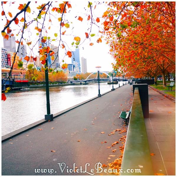 22 Conservatory Melbourne Crown Violets New Dream Apartment   Snapshots