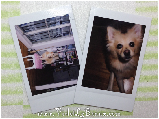 Instax-Mini-8-Review5814
