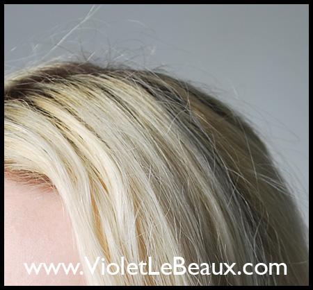 VioletLeBeauxDSC_0433_1330