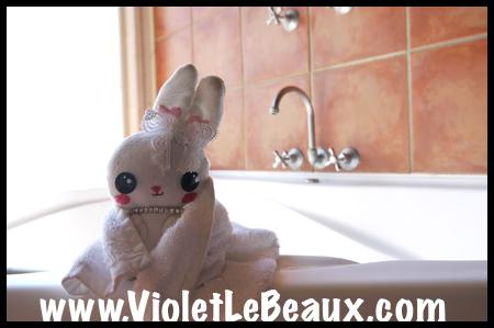 VioletLeBeauxP1010710_1211 copy