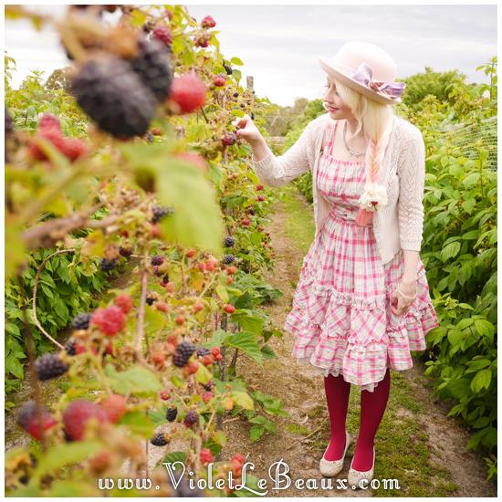 Melbourne-Raspberry-Picking367