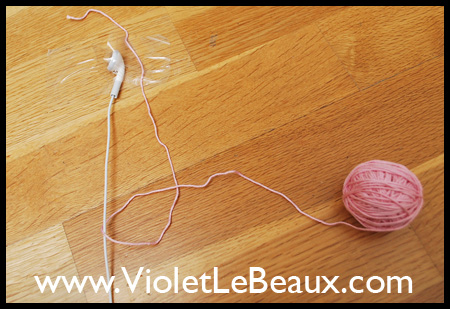 VioletLeBeauxDSC_0075_1607