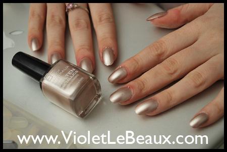 VioletLeBeauxDSC_0315_1833