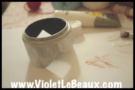 VioletLeBeaux-Pink-Lens-Hood-537_1287 copy