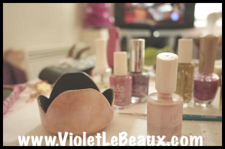 VioletLeBeaux-Pink-Lens-Hood-618_1296 copy