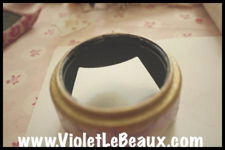 VioletLeBeaux-Pink-Lens-Hood-754_1307 copy