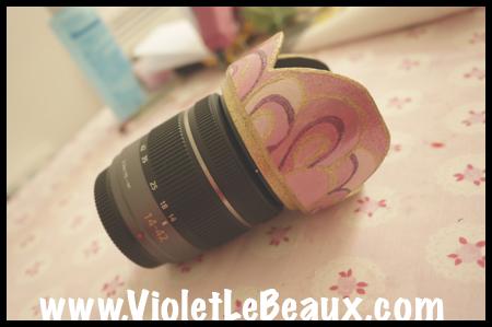 VioletLeBeaux-Pink-Lens-Hood-841_1316 copy