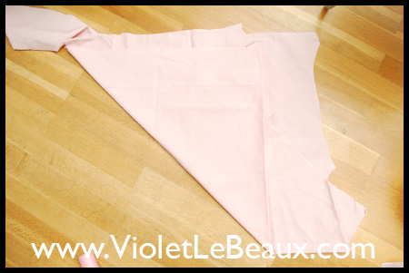 VioletLeBeauxDSC_0215_1733