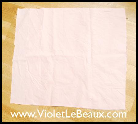 VioletLeBeauxDSC_0216_1734