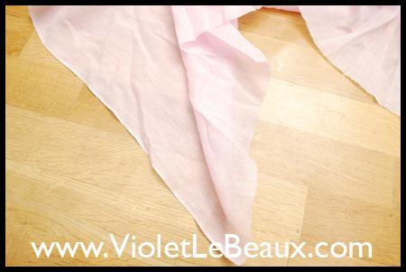 violetlebeauxdsc_0218_1736