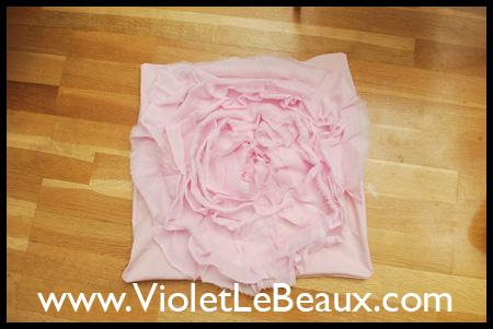 violetlebeauxdsc_0248_1766