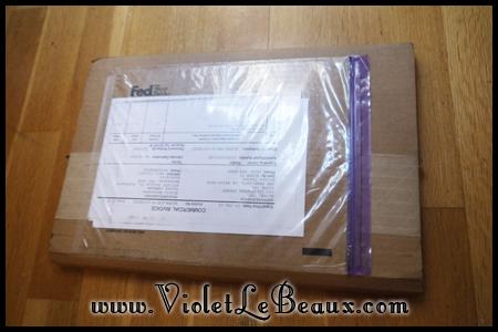 VioletLeBeauxP1080674_20131