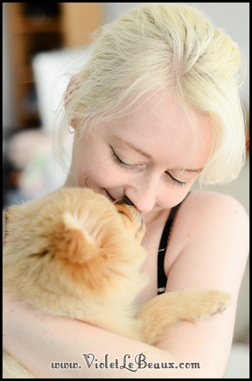 Cute-Pomeranian297