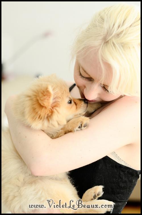 Cute-Pomeranian305