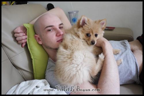 Cute-Pomeranian655