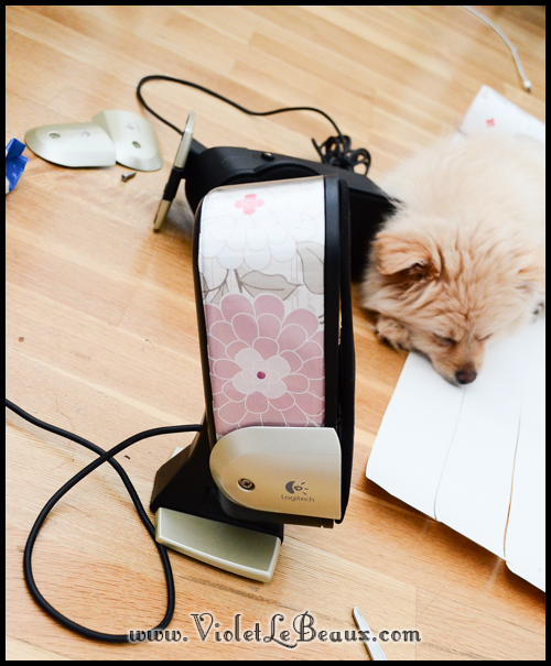 make-cute-speakers494