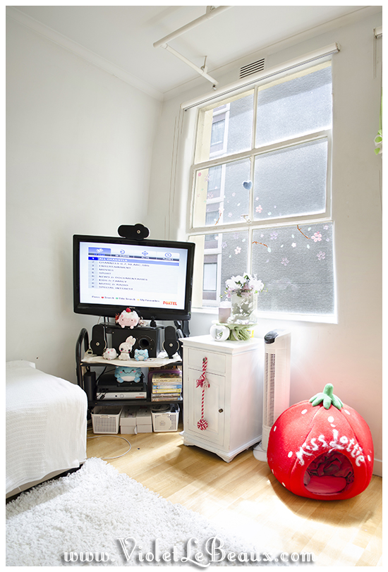 Violets-Kawaii-Beautiful-Living-Room-Decorationa