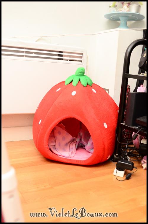 Needle-Felted-Dog-Strawberry-Bed2033
