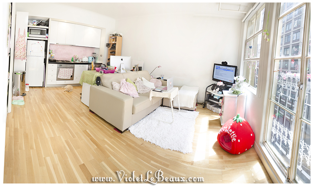 Violets-Kawaii-Beautiful-Living-Room-Decorationm