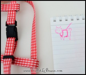 DIY-Pomeranian-Puppy-Harness77